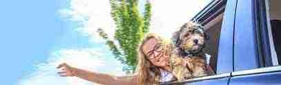 Traslado de perros, gatos y otras mascotas