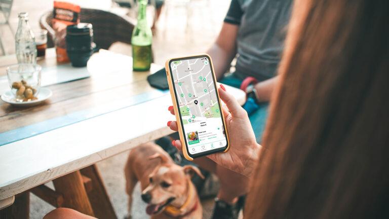 App de Doggies in Town